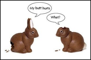 bunny_butt_hurts.jpg