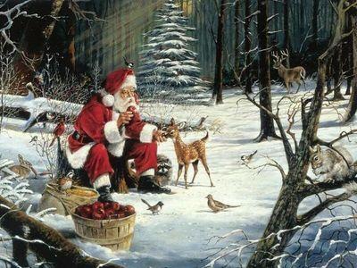 Santa caring for wildlife.jpg