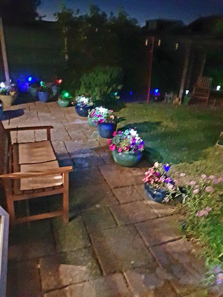 garden night 2018.jpg
