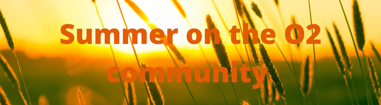 Summer on the community