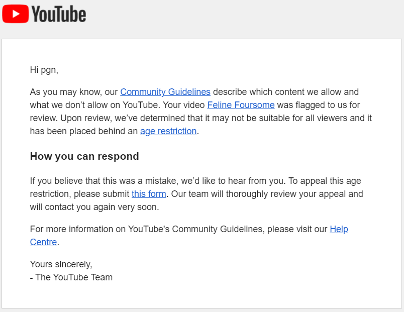 20**Personal info** 11_22_16-Your YouTube video has been age-restricted - p.g.newman**Personal info** - Gmail.png
