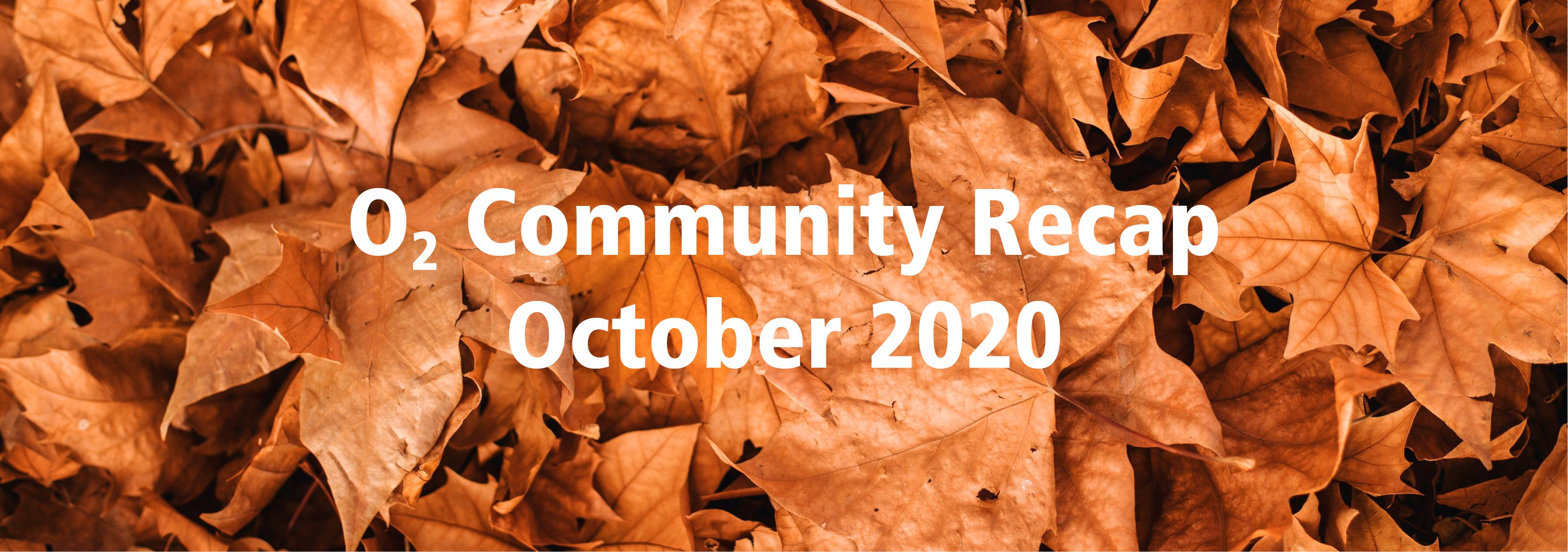 community-recap-oct2020.jpg