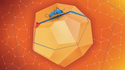 Dodecahedron_2880x1620_Lede.jpg