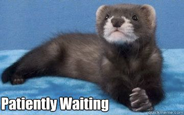 patiently.jpg